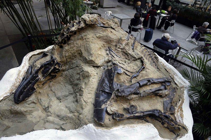 La Jornada Maya Internacional Concepto y significado de dinosaurio: la jornada maya internacional